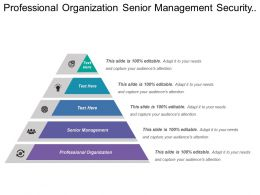 Professional Organization Senior Management Security Department Financial Analysis