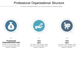Professional Organizational Structure Ppt Powerpoint Presentation Infographic Template Slide Cpb