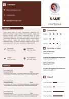 Professional Personal Summary CV Resume Powerpoint Template