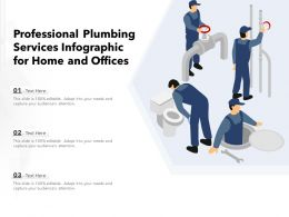 Professional Plumbing Services Infographic For Home And Offices