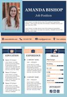 Professional Resume Design Visual CV Template