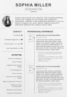 Professional Resume Template With Career Summary