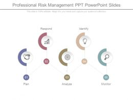 Professional Risk Management Ppt Powerpoint Slides