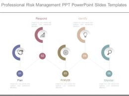 Professional Risk Management Ppt Powerpoint Slides Templates