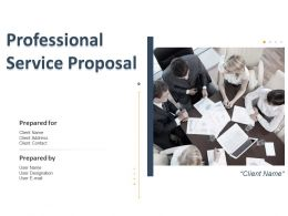 Professional Service Proposal Powerpoint Presentation Slides