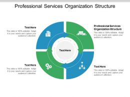 Professional Services Organization Structure Ppt Powerpoint Presentation Gallery Clipart Images Cpb