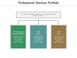 Professional Services Portfolio Ppt Powerpoint Presentation Summary Layout Ideas Cpb