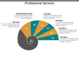 Professional Services Ppt Powerpoint Presentation Pictures Demonstration Cpb