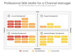 Professional Skills Matrix For A Channel Manager