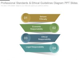 Professional Standards And Ethical Guidelines Diagram Ppt Slides