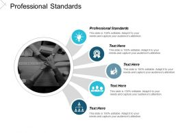 Professional Standards Ppt Powerpoint Presentation Icon Slide Cpb