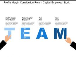 Profile Margin Contribution Return Capital Employed Stock Assets