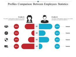 Profiles Comparison Between Employees Statistics