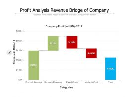 Profit Analysis Revenue Bridge Of Company