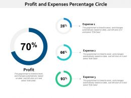 Profit And Expenses Percentage Circle