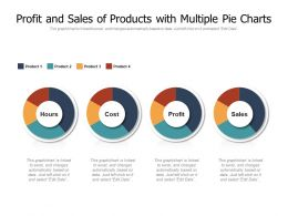 Profit And Sales Of Products With Multiple Pie Charts