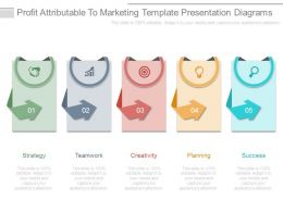 Profit Attributable To Marketing Template Presentation Diagrams