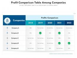 Profit Comparison Table Among Companies
