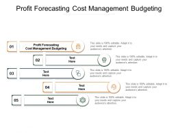Profit Forecasting Cost Management Budgeting Ppt Powerpoint Styles Cpb