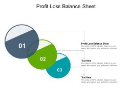 Profit Loss Balance Sheet Ppt Powerpoint Presentation Professional Design Inspiration Cpb
