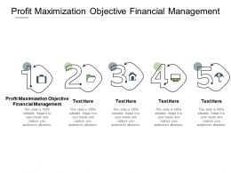 Profit Maximization Objective Financial Management Ppt Powerpoint Presentation Icon Graphics Download Cpb