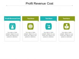 Profit Revenue Cost Ppt Powerpoint Presentation Model Example File Cpb