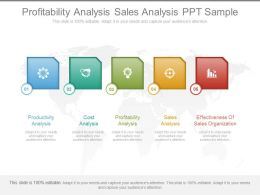 Profitability Analysis Sales Analysis Ppt Sample