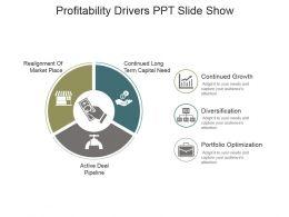 Profitability Drivers Ppt Slide Show