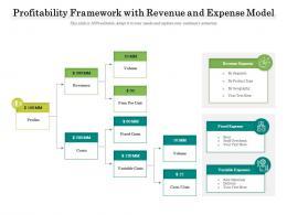 Profitability Framework With Revenue And Expense Model
