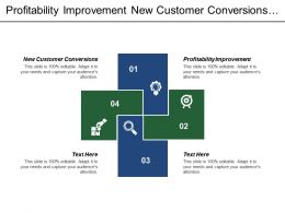 Profitability Improvement New Customer Conversions Innovation Processes Operational Processes