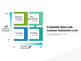 Profitability Matrix With Customer Satisfaction Level
