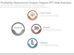 Profitability Measurement Analysis Diagram Ppt Slide Examples