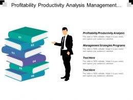Profitability Productivity Analysis Management Strategies Programs Typical Marketing