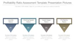 Profitability Ratio Assessment Template Presentation Pictures