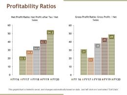 Profitability Ratios Powerpoint Themes
