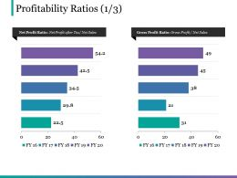 Profitability Ratios Ppt Infographic Template