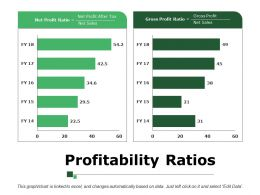 Profitability Ratios Ppt Samples