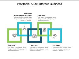 Profitable Audit Internet Business Ppt Powerpoint Presentation Professional Portfolio Cpb