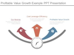 Profitable Value Growth Example Ppt Presentation