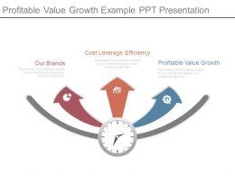Profitable Value Growth Example Ppt Presentation