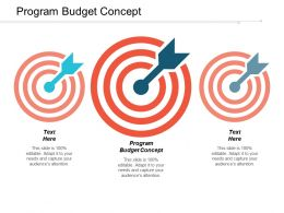 Program Budget Concept Ppt Powerpoint Presentation Icon Deck Cpb
