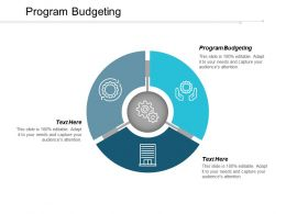 Program Budgeting Ppt Powerpoint Presentation Icon Design Ideas Cpb