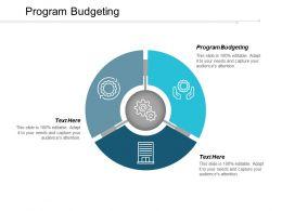 Program Budgeting Ppt Powerpoint Presentation Icon Design Ideas Cpb