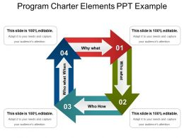 Program Charter Elements Ppt Example