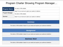 Program Charter Showing Program Manager Summary Background And Business Needs