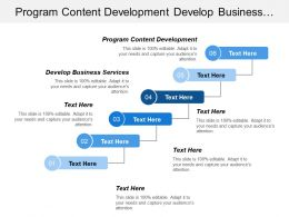 Program Content Development Develop Business Services Manage Applications