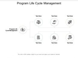 Program Life Cycle Management Ppt Powerpoint Presentation Professional Format Cpb