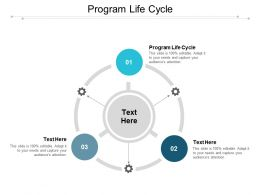 Program Life Cycle Ppt Powerpoint Presentation Infographics Deck Cpb