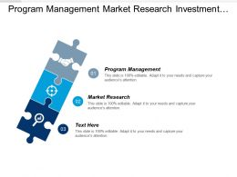 Program Management Market Research Investment Portfolio Management Branding Cpb