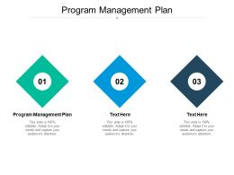 Program Management Plan Ppt Powerpoint Presentation File Template Cpb